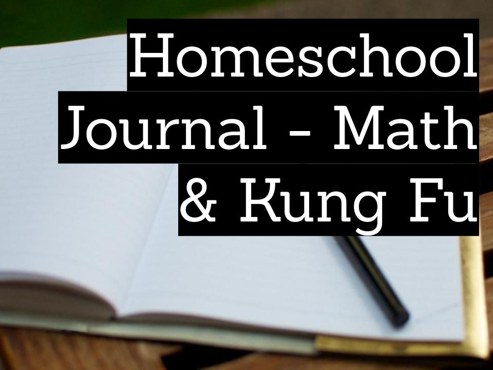 Homeschool journal - math and kung fu